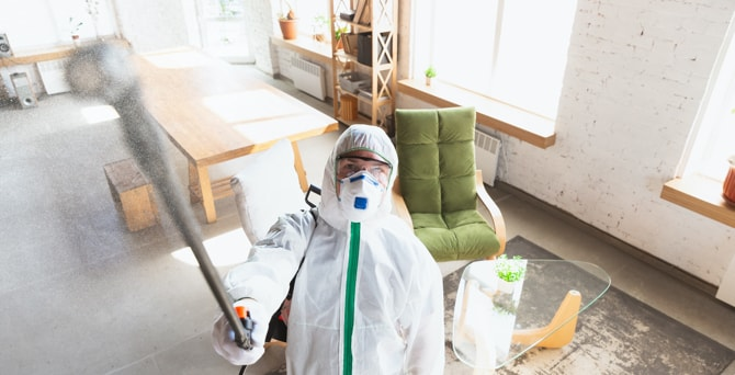 Mold removal and remediation from home interior