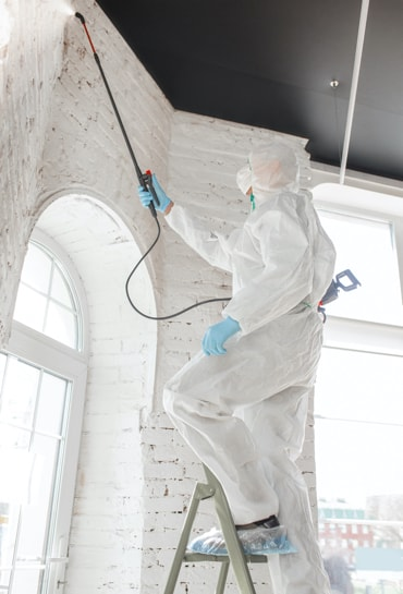 Mold remediation from ceiling and walls